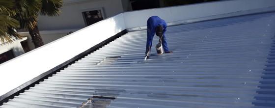 Visible Improvements Roof Painting Randburg Sandton Johannesburg 1 1